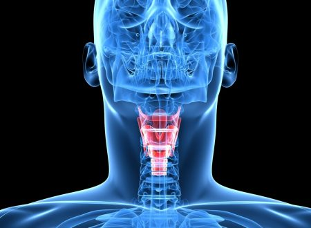 Gli ormoni tiroidei e loro influenza sul metabolismo